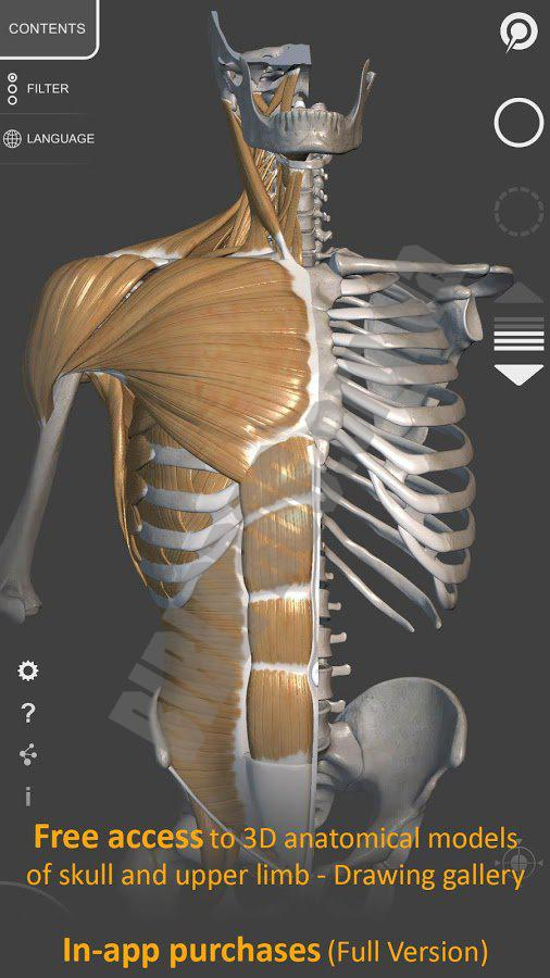3d Anatomy 1271 Android