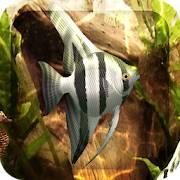 HD Aquarium Live Wallpaper 3D